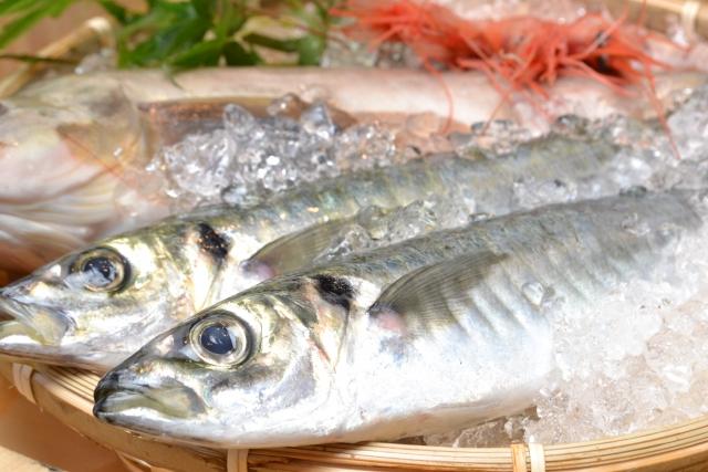 筋トレと魚