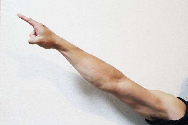 上腕の鍛え方