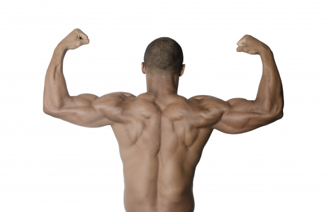 肩の筋トレ